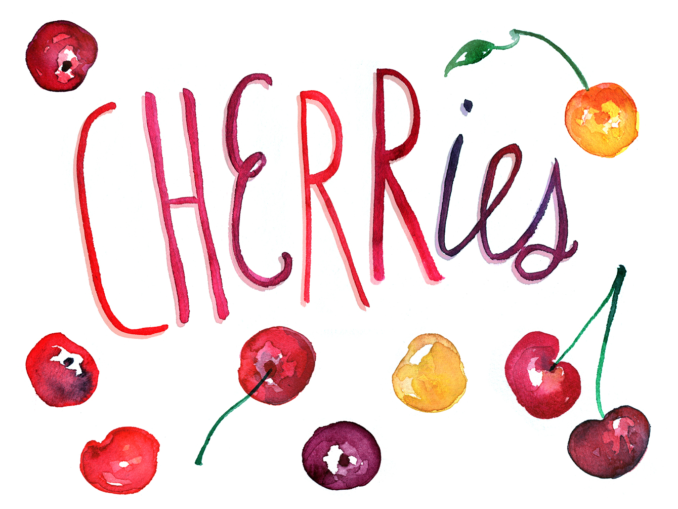 cherries watercolor illustration