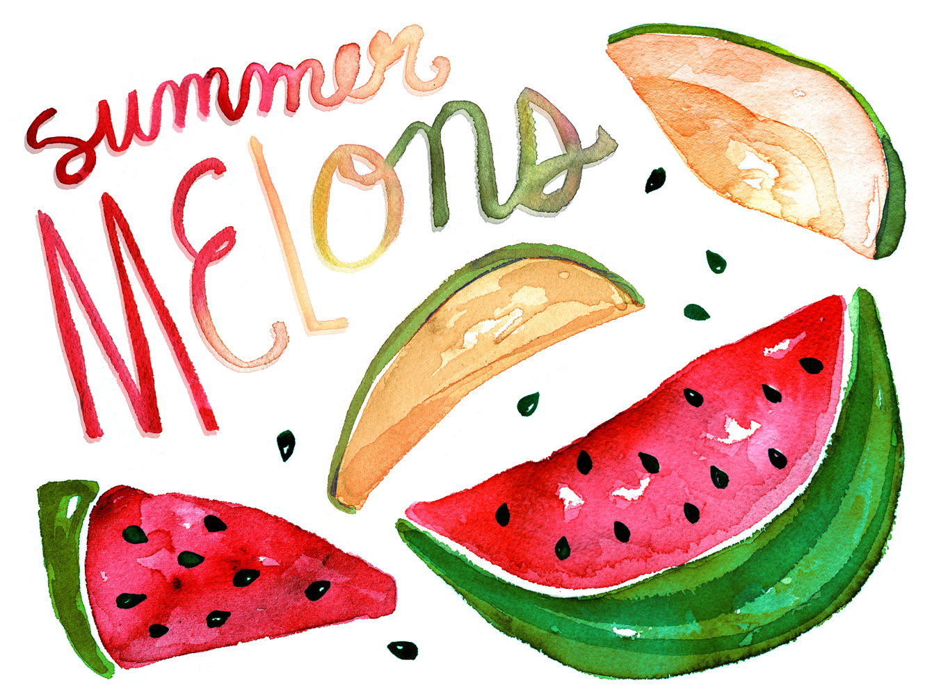 melons watercolor illustration
