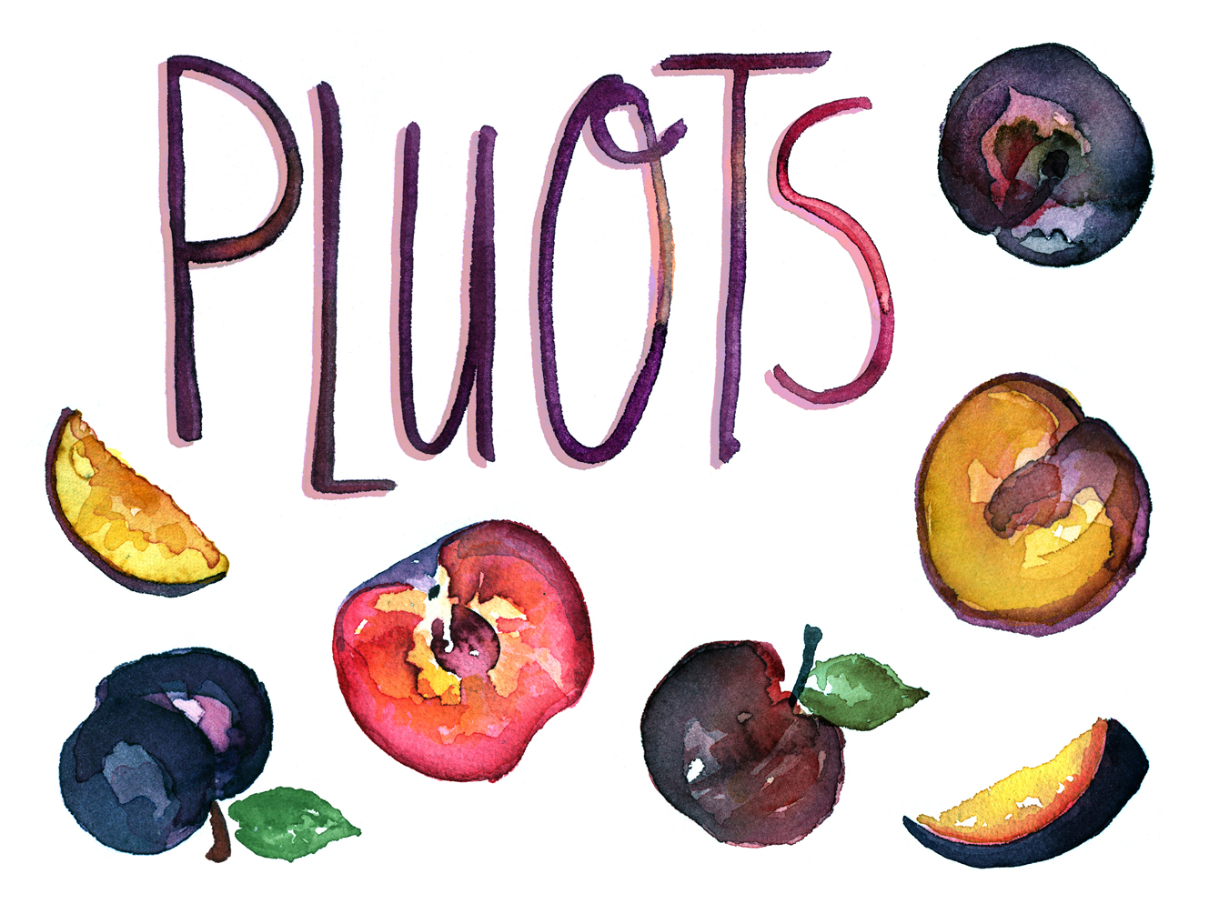 fruit watercolor illustration