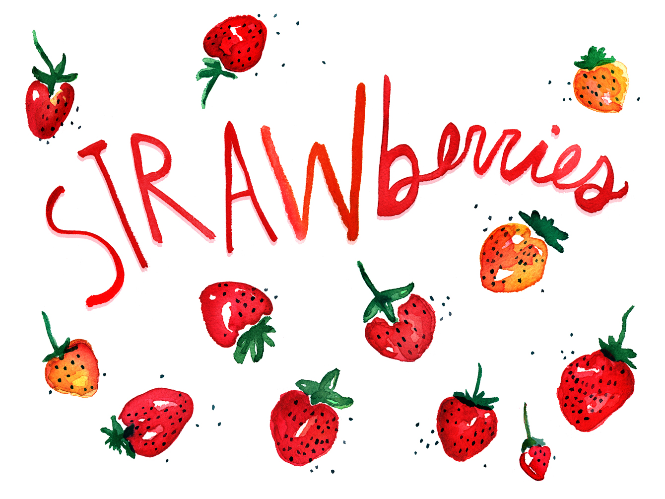 strawberries watercolor illustration