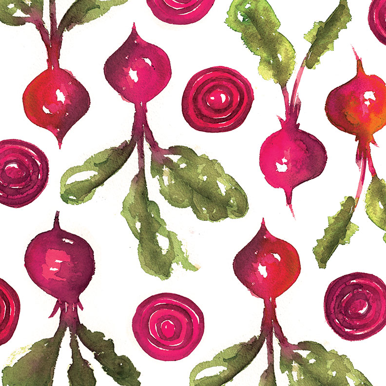 beet illustration